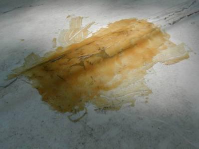 01-botchedrepair (Bagian yang bocor)